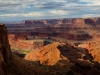 Dead Horse Point (1 of 1tri LEAF flower webDead horse1_DSC2928-
