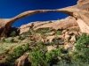 Landscape arch (1 of 1tri LEAF flower web_DSC2736-Edit