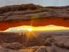 Mesa Arch sunrise (1 of 1tri LEAF flower web_DSC2889-Edit-Edit-Edit