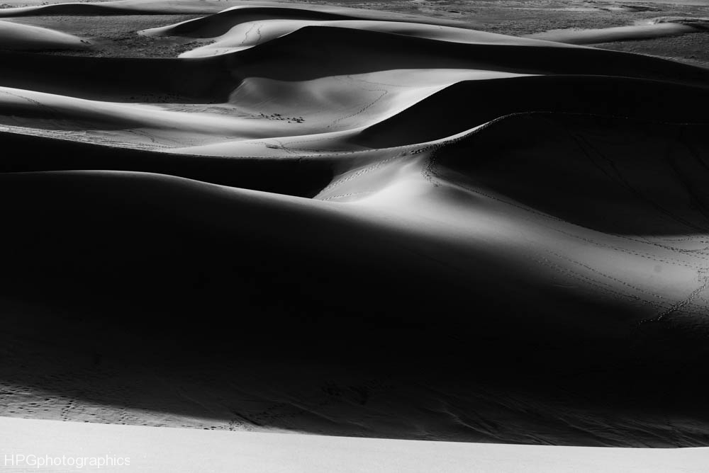 B&W Dunes (1 of 1_DSC2874-Edit