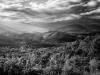 Foothills--DSC9011-b&w-web