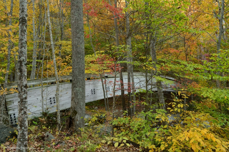 Bridge at Crabtree Falls