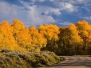 Colorado - Grand County