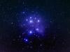 Pleiades2 (1 of 1Pleiades 11-4 _DSC7003