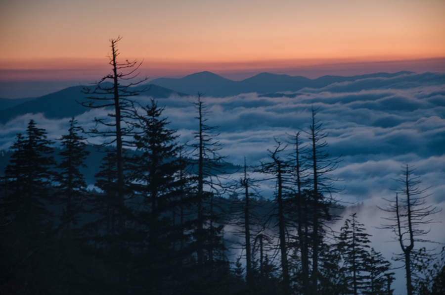 clingman-dawn4_dsc8574web