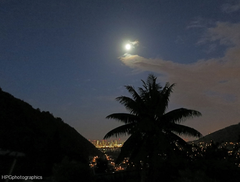 Honolulu Moon