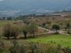 Near Monterotono