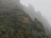 Black Hills Fog