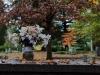 Graveyard2 (1 of 1_DSC4196