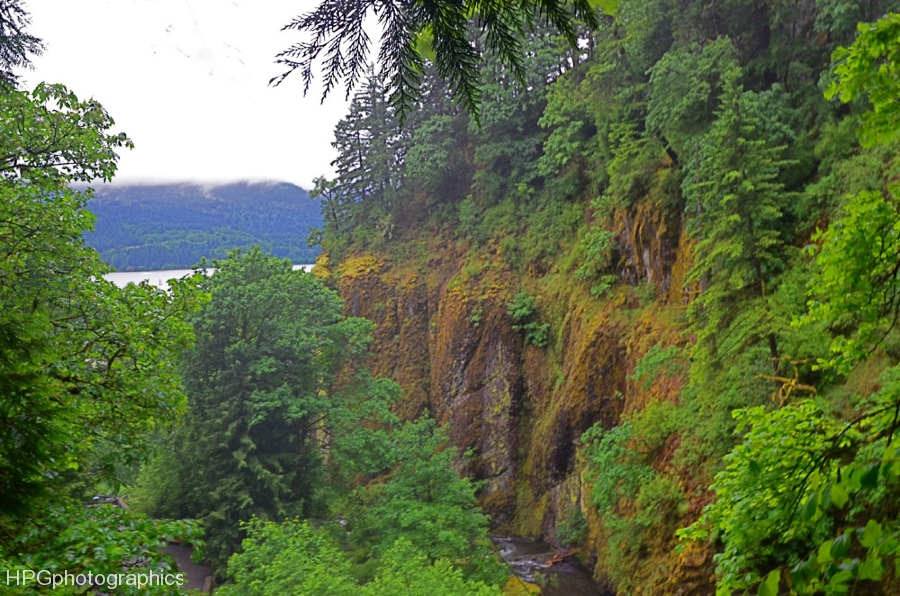 Near Multnomah Falls
