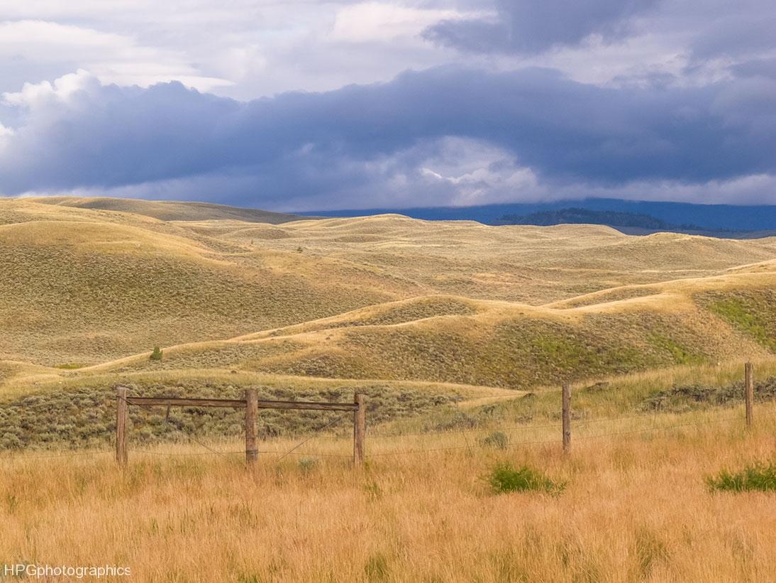 Wym-hills-IMG_5447web-2